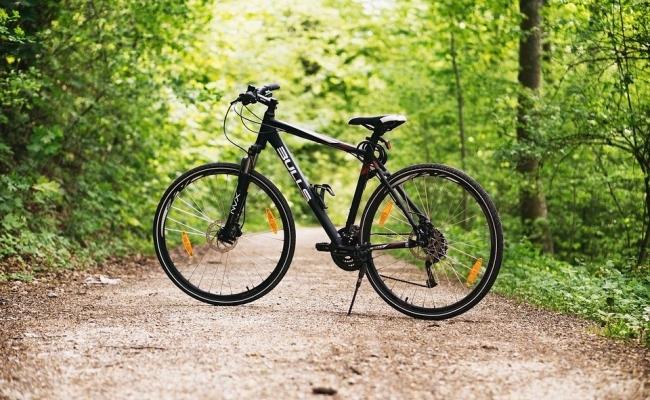 Cat merge un olandez pe biciclete anual?