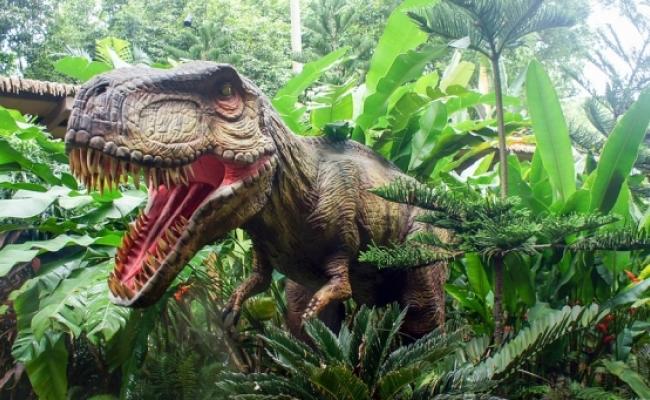 Cei mai mici dinozauri?