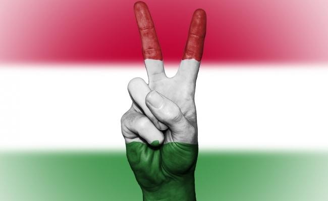 Cu cine se invecineaza Ungaria?