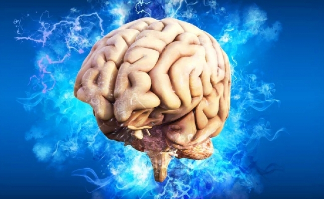 Creierul simte durere?
