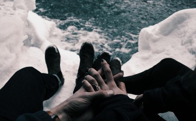 Intalnire surprinzatoare in Antarctica