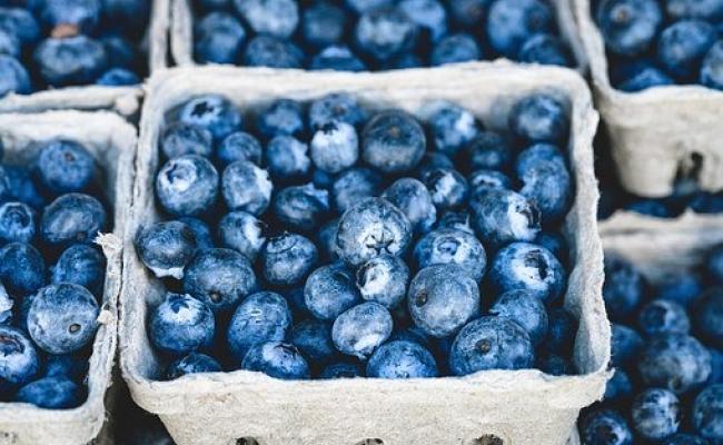 Beneficile afinelor pentru sanantate