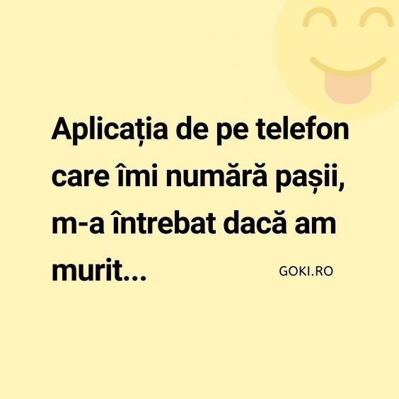 Aplicatia de pe telefon