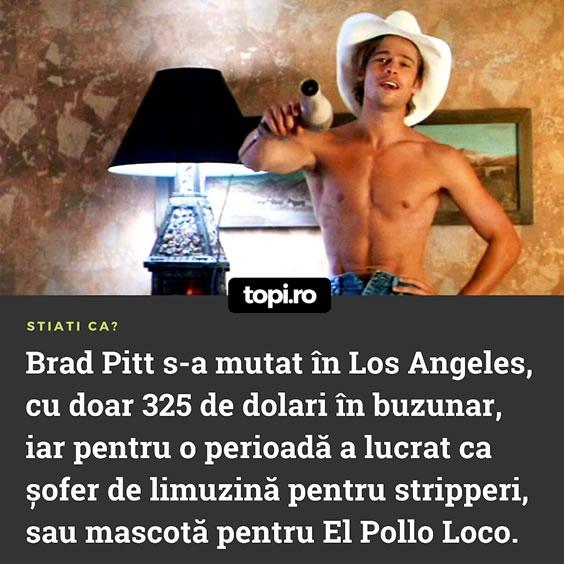 Brad Pitt mascota