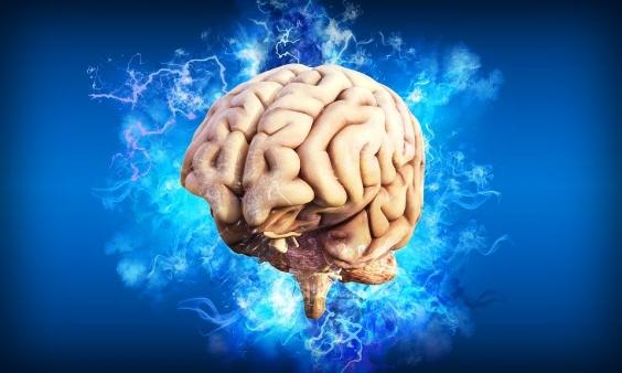 Durerea creierului